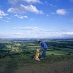 dog exmoor